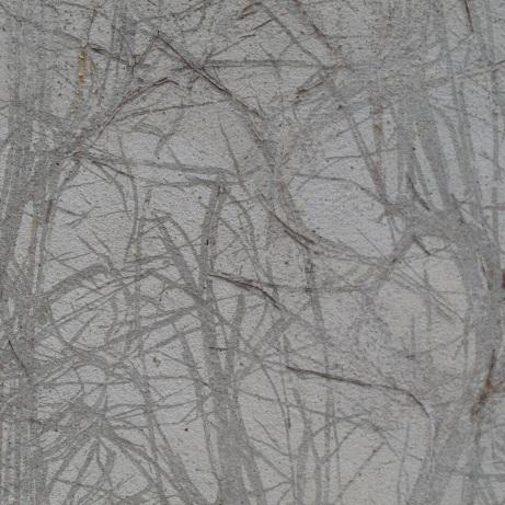 20121120-140152.jpg
